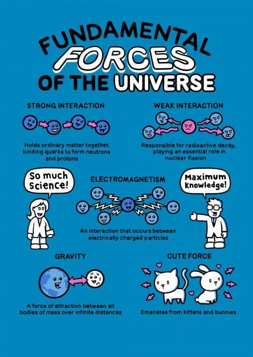 forces of the universe